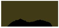 apex finans logo